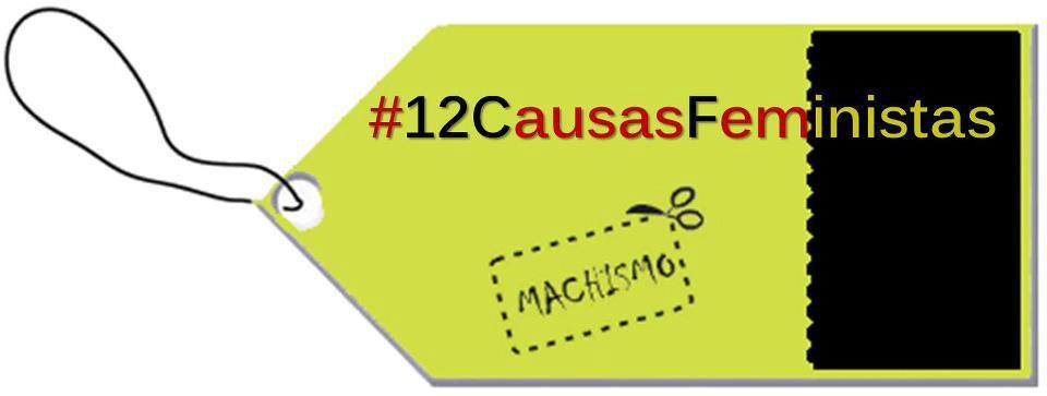 Imagen de la inciativa 12 Causas Feministas para un 2013 menos Machista