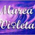 Marea Violeta: un movimiento ante los recortes en igualdad