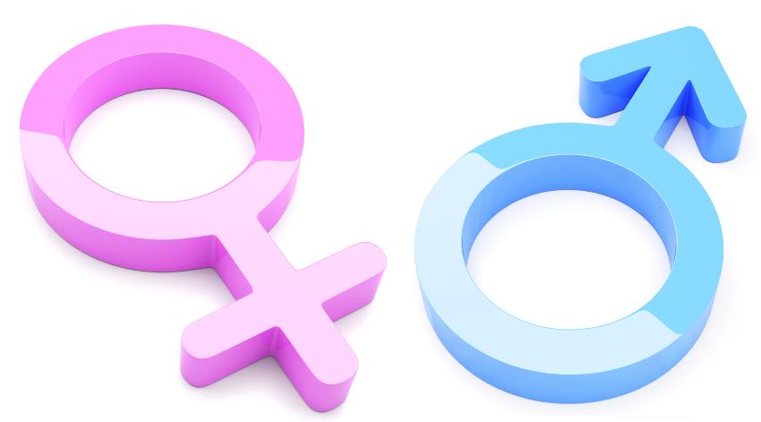 Símbolos de mujer y hombre como representación de paridad